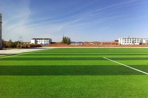 Artificial Grass for Football, MT-Surf