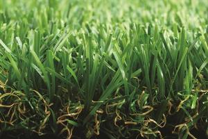 Residential Artificial Grass, MT-Promising / MT-Marvel